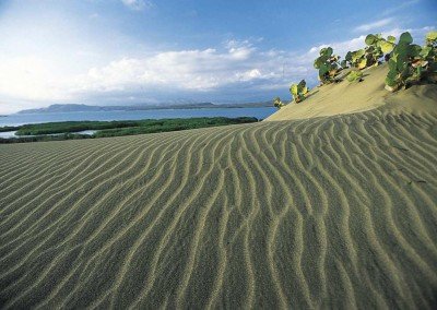 The one and only desert of the Caribbean - Las Dunas de Bani