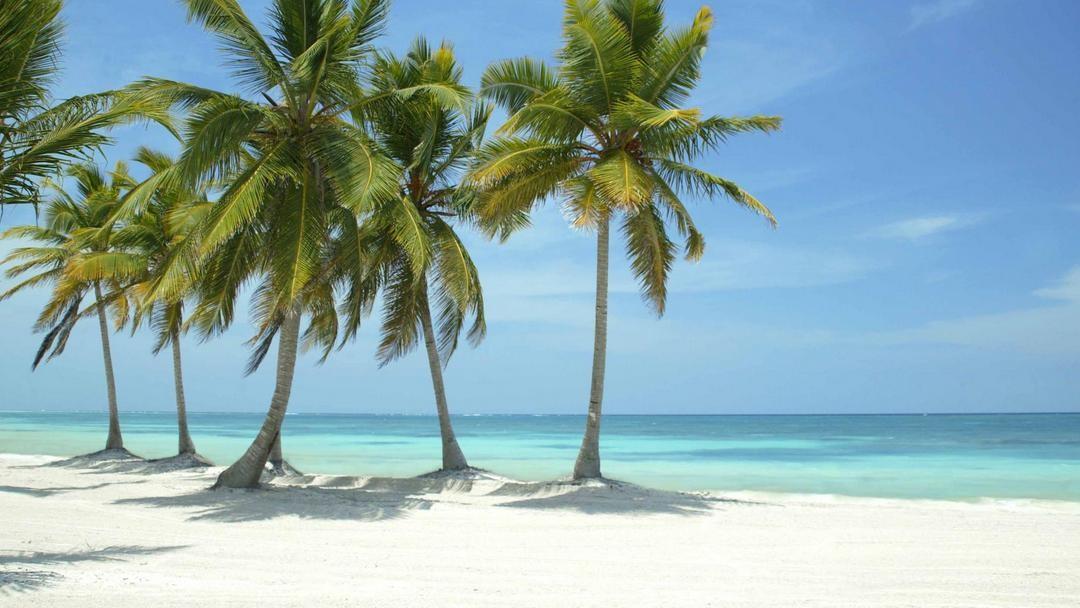 Strandhochzeit in Punta Cana – 5 Gründe, am Strand von Juanillo mit DOMINICAN EXPERT zu Heiraten