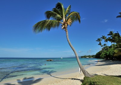 A beautiful pristine beach on the Samaná peninsula